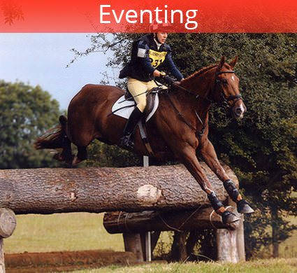 eventing trainer